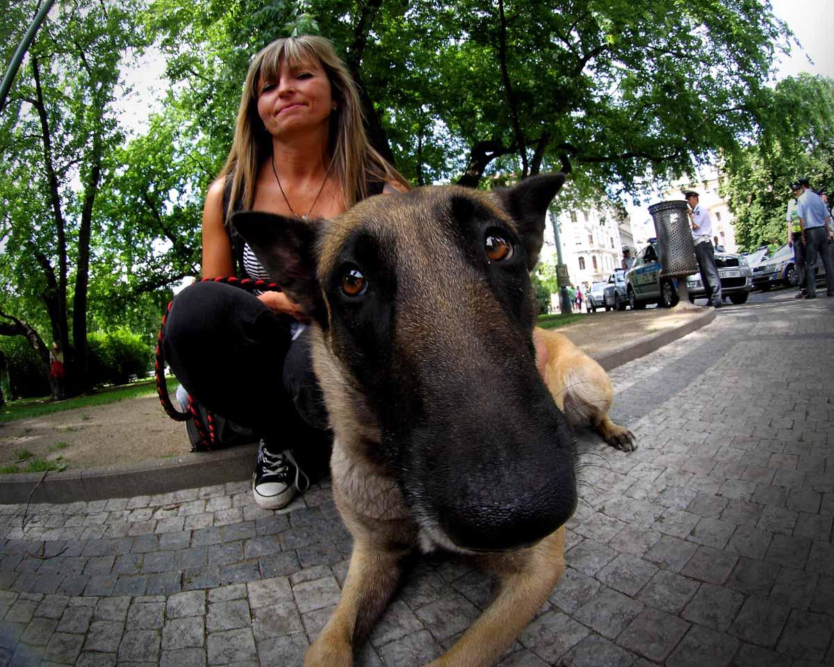 «Акция в защиту животных и Парад вегетарианцев» Репортаж от фотографа с места событий