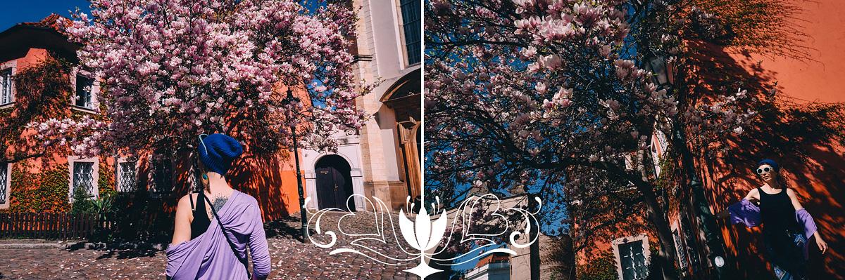 фотограф в праге весна
